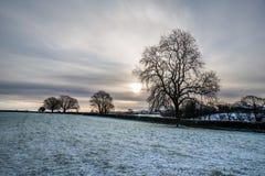 Nevichi nei campi dell'azienda agricola con l'albero ed il bello cielo nuvoloso, Cornovaglia, Regno Unito Immagine Stock Libera da Diritti