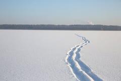 Nevichi sulla superficie del lago congelato Immagine Stock
