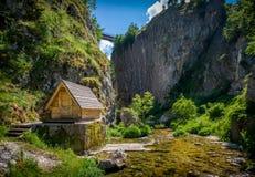 Nevidio kanjon i Montenegro Royaltyfri Foto