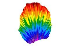 Nevis - ο χάρτης είναι σχεδιασμένο αφηρημένο ζωηρόχρωμο σχέδιο ουράνιων τόξων διανυσματική απεικόνιση