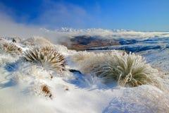 Nevis passa no inverno imagens de stock