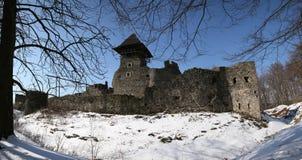 Nevitske Schloss 2 stockfotografie