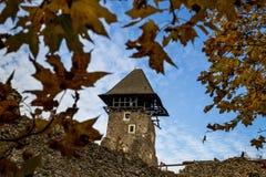 Nevitsky城堡的废墟 免版税库存图片