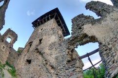 nevitsky καταστροφές κάστρων Στοκ Εικόνες