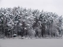 ` Nevoso de los párpados del ` del ` de la bella durmiente del ` del sueño de la plata del embarcadero de la casa de campo del bo Imagenes de archivo