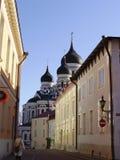 nevsky亚历山大的大教堂 库存图片