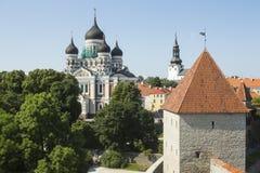 nevsky alexander domkyrka Royaltyfria Foton