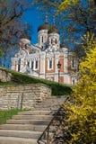 nevsky alexander domkyrka estonia tallinn royaltyfria bilder