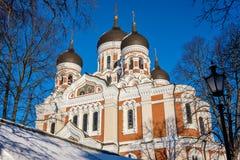 nevsky alexander domkyrka estonia tallinn arkivfoton
