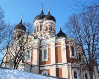 nevsky domkyrka för 2 alexander Arkivbilder
