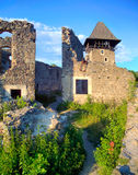 Nevytsky Castle in Zakarpattya Stock Photography