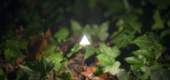 New Age Spirituality. Concept image of a glowing white triangle surrounded by vegetation. Abstract of new age spirituality Royalty Free Stock Photography