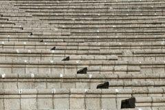 New amphitheater in Marmaris Stock Photo