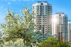 New apartment buildings in spring time Royalty Free Stock Image
