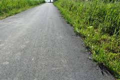 New asphalt road. A new asphalt road through which the grass comes out. Nature is a miracle stock images
