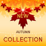 New autumn collection. Background with maple leave Royalty Free Stock Image