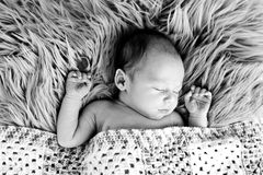 New Baby Boy sleeping covered by  crotcheted blanket - black and. Black and white image of New Baby Boy sleeping covered by crotcheted blanket on fluffy grey fur Royalty Free Stock Photography
