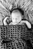 New Baby Boy sleeping covered by crotcheted blanket on fur rug -. Black and White image of New Baby Boy sleeping covered by dark olive green crotcheted blanket Stock Photos