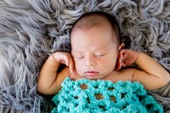New Baby Boy sleeping covered by light turquoise blue crotcheted. Blanket on fluffy grey fur rug, with arms out - caucasian and pacific islander ethnicity Stock Photography