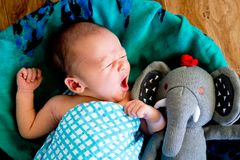 New Baby Boy yawning in woven basket. Wrapped in blue and white checked wrap on green patterned scarf with arms out and toy knitted elephant - caucasian and Royalty Free Stock Photo