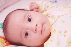 New baby looking at camera Royalty Free Stock Photos