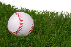New baseball in grass Stock Image