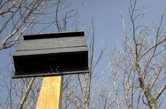 Bat House on Wood Post. A new bathouse mounted on a post Stock Photos