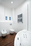 New bathroom Stock Image