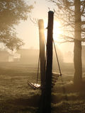 New Beginning. The sunrise in foggy autumn morning in the camp side Stock Photography