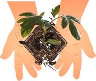 New beginnings Illustration Stock Photo