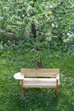 New bench under an apple tree in spring Stock Photo