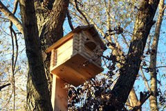 New big wooden birdhouse on tree Stock Images