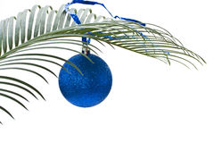 New blue ball on the palm-branch Royalty Free Stock Photo