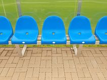 New blue plastic seats on outdoor stadium players bench, chairs with new paint below transparent bended plastic roof. Royalty Free Stock Photo