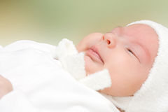 New born Stock Images