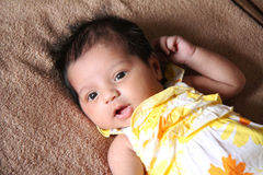 New born asian baby girl looking at viewer. Cute dress. Baby is one month old. Asian baby girl royalty free stock photography