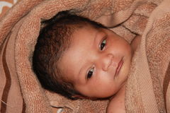 New born asian baby girl wrapped in a towel Stock Photo