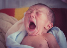 New born Asian baby. Infant in a hospital Royalty Free Stock Image