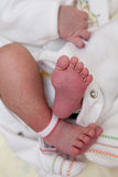 New born babes feet and hand. This is a picture of a new born babies feet with one of his hands royalty free stock photos