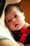 New Born Baby. A new born baby rests on her mothers chest as she looks into the camera. Warm natural light with soft focus Royalty Free Stock Photography
