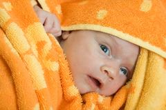 New born baby Stock Photography