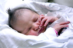 Free New Born Baby Royalty Free Stock Image - 4023726