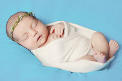 New born baby asleep. New born infant child baby asleep Stock Image