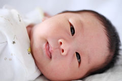 New Born Baby Boy Stock Photos