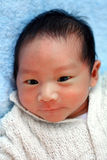New born baby boy Stock Photo