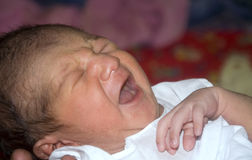 New born baby crying royalty free stock images