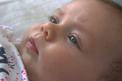 New born baby face Stock Image
