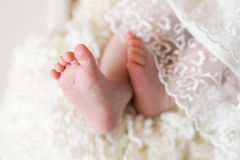 New born baby feet on a white blanket Royalty Free Stock Images