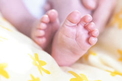 New born baby feet on yellow blanket Stock Image