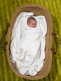 New born baby girl in a basket royalty free stock photos